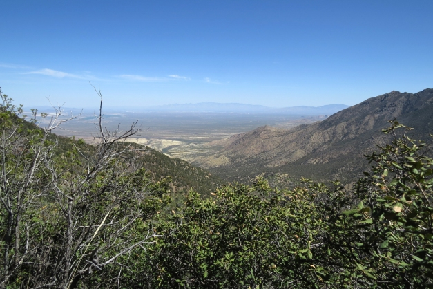 top of Madera Canyon