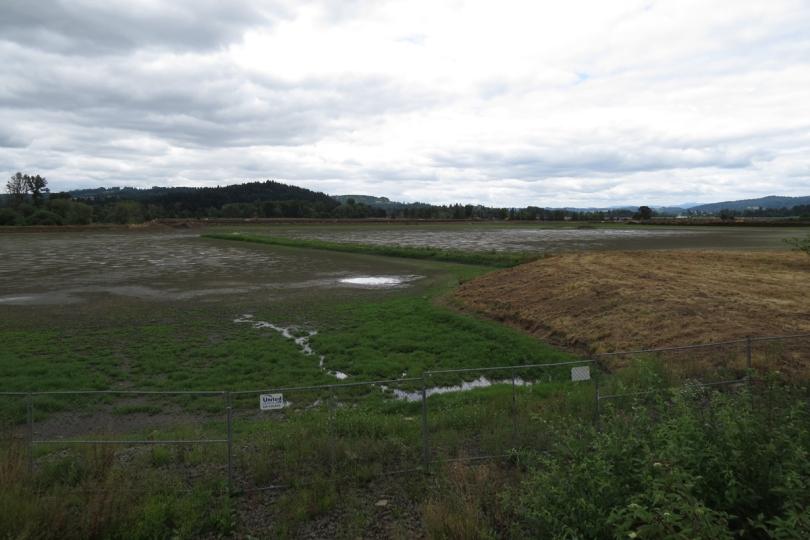 fernhill lake